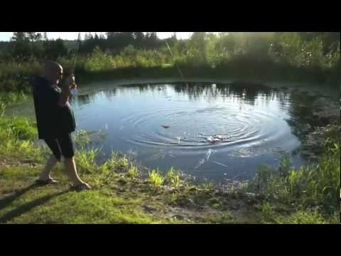trout pond part ii trout fishing couldn t be any easier especially ...