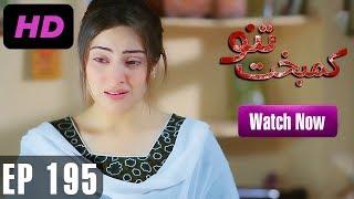 Kambakht Tanno - Episode 195 | A Plus ᴴᴰ Drama | Shabbir Jaan, Tanvir Jamal, Sadaf Ashaan