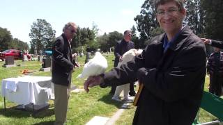 Angel New Friend At St. John's Cemetery May 5, 2012.