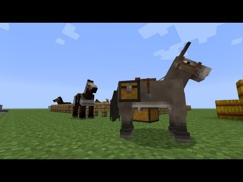 How To Tame a Horse in MineCraft 1.6