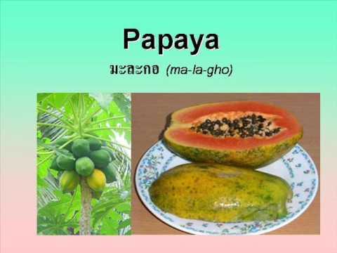 """Fruits"" English-Thai Dictionary"