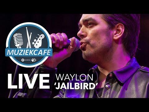 Waylon - 'Jailbird' live bij Muziekcafé