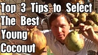 Top 3 Tips to Ensure You Pick the Best Ripe Young Coconut