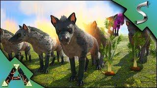 HYAENODON TAMING! BREEDING UP A LITTLE WAR PACK! - Ark: RAGNAROK [DLC Gameplay E10]