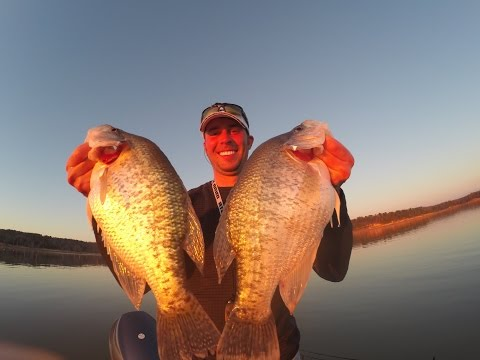 Crappie fishing Grenada Lake, MS Spring 2014