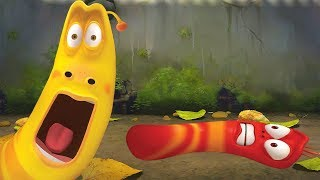 LARVA - FLAT AS A PANCAKE | Cartoon Movie | Cartoons For Children | Larva Cartoon | LARVA Official