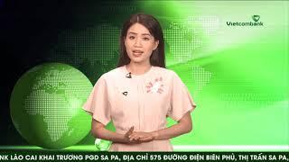 Bản tin hình Vietcombank Số 41