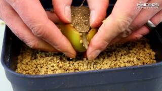How To Prepare Pellets For The Feeder