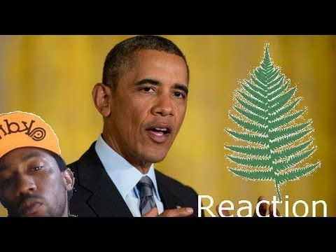 Between two ferns Obama and Zach Galifianakis Hilarious Sit down Interview Reaction