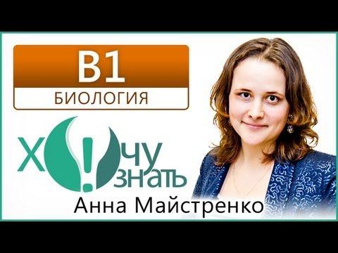 B1 по Биологии Демоверсия ЕГЭ 2013 Видеоурок