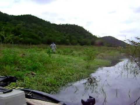 เดินตีปลาช่อน เขื่อนปราณบุรี  9   8   2554