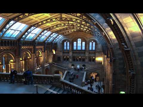 natural history museum Paddington London