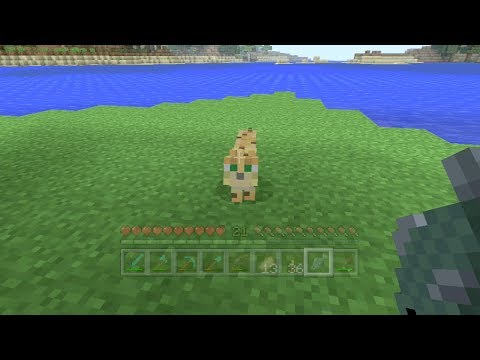 Minecraft Xbox - Kitty Cat [145]