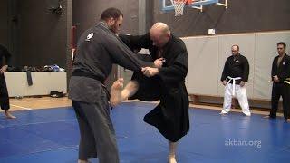 Ninjutsu kicks against MMA and Judo holds - Yossi Sheriff