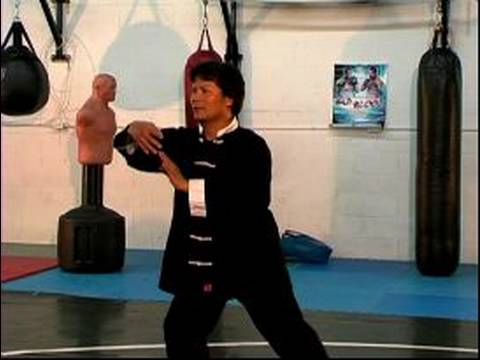 Basic Tai Chi Chuan Moves : The Pon Techniques for Tai Chi Image 1