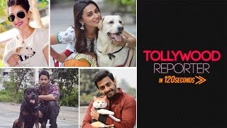 Tollywood Reporter in 120 Seconds | Celebs and Their Pets | 2016