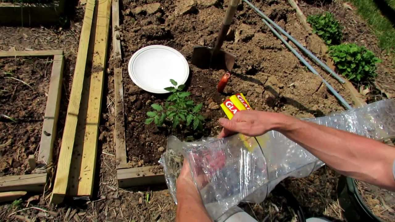 how to build a garden cage