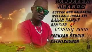 Najjaash Araboo Guyyaa Mo Halkaniin