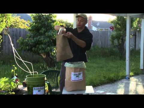 How to make Boogie Brew Compost Tea.avi
