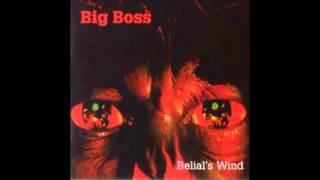 Watch Big Boss Suffered Death video