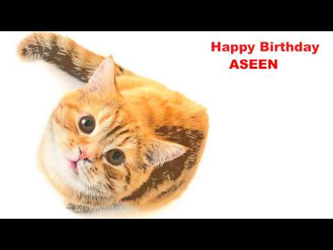 Aseen   Cats Gatos - Happy Birthday