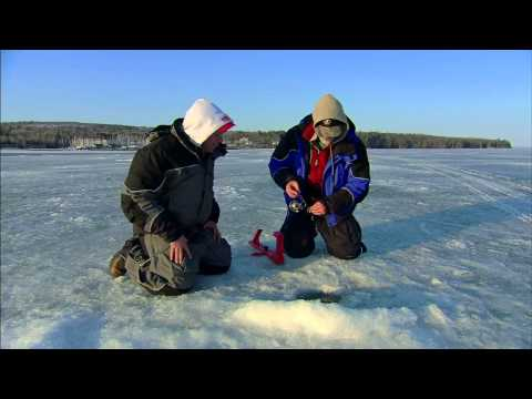 Late Ice Fishing Steelhead Action!