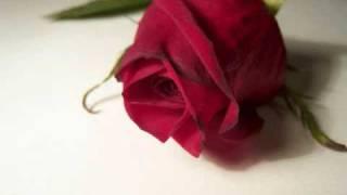 Watch Chantal Kreviazuk Blue video