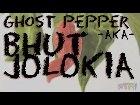 What is the Bhut Jolokia / Ghost Pepper Salsa Recipe