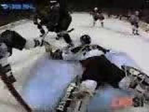 1999 - Brett Hull goal Video
