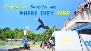 Fantastic Beasts and Where they Jump 2016 - Rilla Hops - Parkour | Freerunning