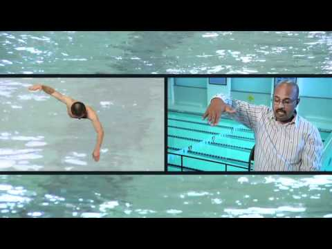 Deep Catch Stroke is Fastest Swimming Move