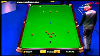 Barry Hawkins vs Mark Selby - WSC 2013