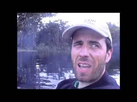 selva del orinoco, venezuela