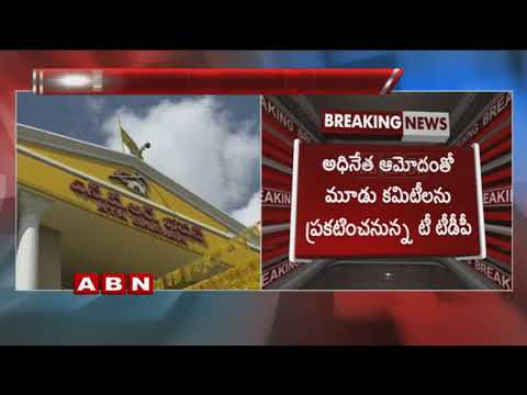 T-TDP leaders To Meet CM Chandrababu Naidu Over TDP Committees For Telangana Polls