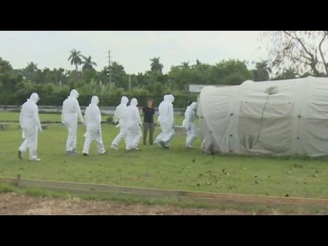 CNN\'s Patrick Oppmann examines how Cuba is preparing health care workers to fight Ebola in West Africa.