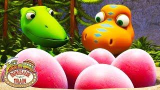 Watch Dinosaur Eggs Hatch with Buddy! | Dinosaur Train