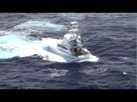 Helicopter Footage of Black Marlin Fishing