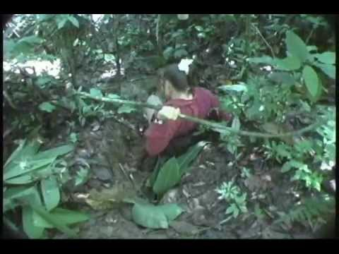 Tavara River Expedition