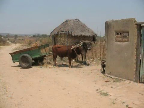 rural life in southern Zambia