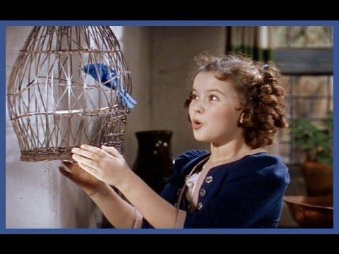 O Pássaro Azul de 1940 Dublado. Filme Completo. Sessão da tarde. The Blue Bird Brazilian