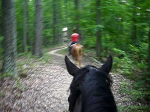 Trail Ride at Warriors Path State Park part 1