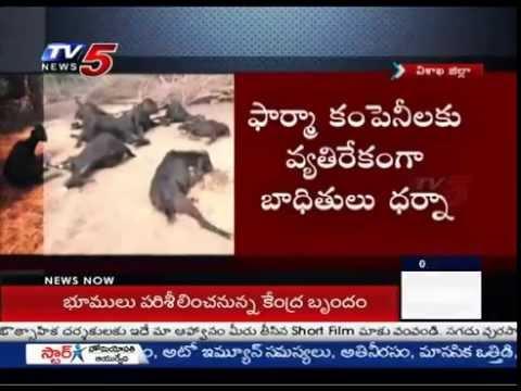 Vizag Zone Turns To Death Zone | Industrial Pollution : TV5 News