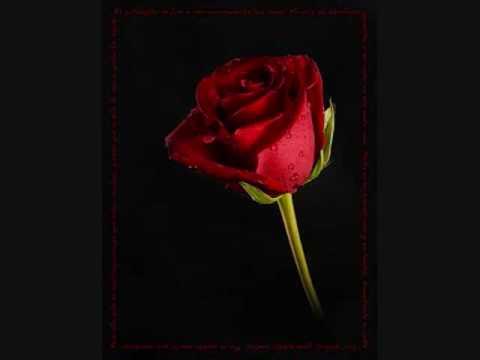letra de la cancion rosas rojas: