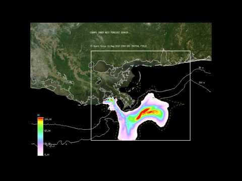 The BioCast System: Simulating surface oil transport during Deepwater Horizon oil spill