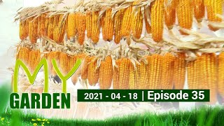 My Garden | Episode 35 | 18 - 04 - 2021 | Siyatha TV