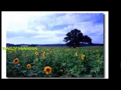 Aaradhippan Namukku Kaaranamundu video