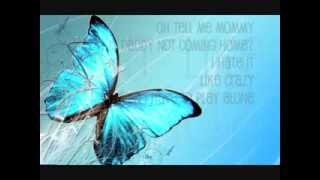 Butterfly  - Amos Raber Jr.  with LYRICS!