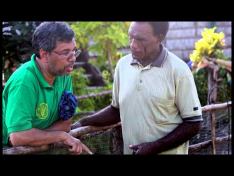 Kwai Island_ Solomon Islands Organic Farming Model for Family Food and Nutritional Security-HD