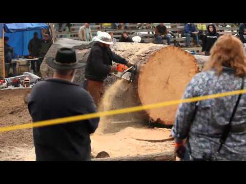 Southeast Alaska State Fair, Haines Logging Competition