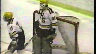 Denfeld Hockey 1989 Road to State